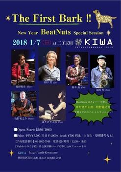 BN 1_7 KIWA2.jpg
